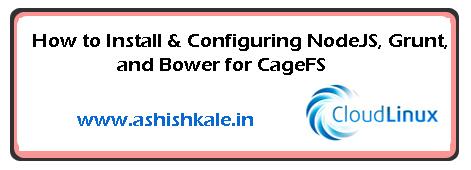 Configuring NodeJS